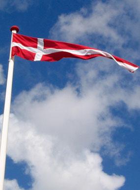 Ekstra Dannebrogsstander | Køb stander flag få en bred vimpel - se NF75